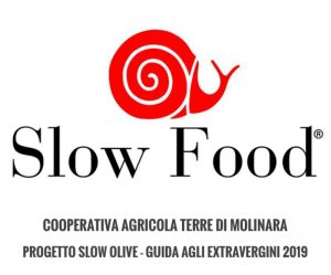 slow food slow olive terre di molinara