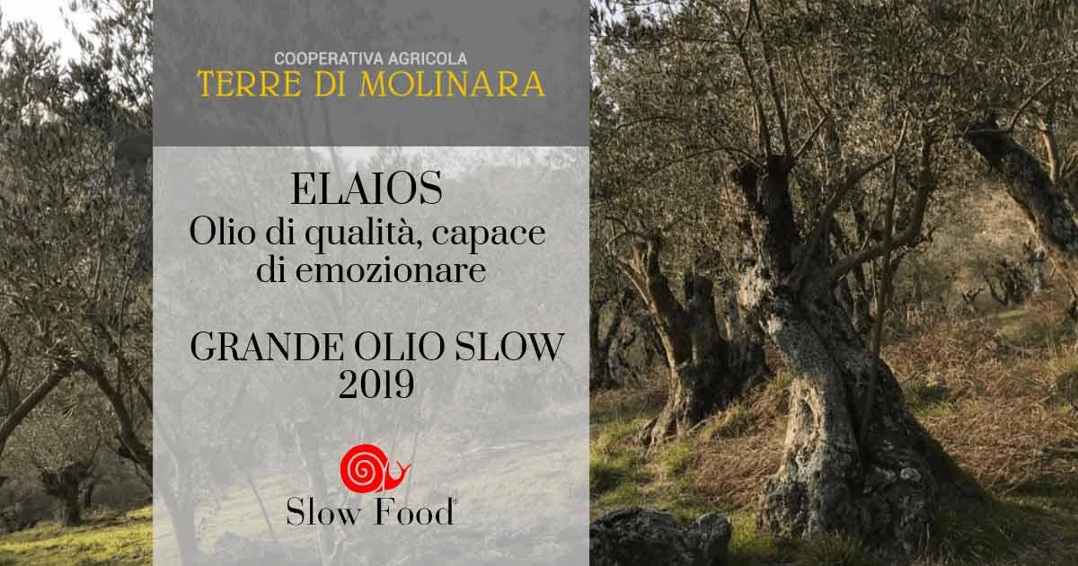 Riconoscimento Grande Olio Slow per Elaios di Terre di Molinara